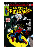Amazing Spider-Man 194 Cover: Spider-Man and Black Cat