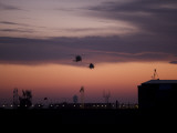 A Pair of UH-60 Black Hawk Helicopters Approach their Landing in Baghdad  Iraq