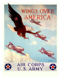 WWII US Army Air Corps &#39;Wings Over America&#39;