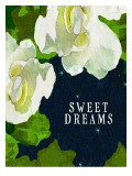 Sweet Dreams Gardenias