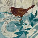 Songbird II