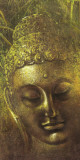 Buddha in Green ll