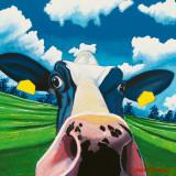 Cow II  Nosey Cow