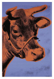 Cow, c.1971 (Purple and Orange) Reproduction d'art par Andy Warhol