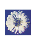 Flower for Tacoma Dome  c1982 (Blue and White)