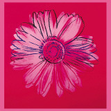 Marguerite, vers 1982 (cramoisi et rose)|Daisy, c. 1982 (crimson and pink) Reproduction d'art par Andy Warhol