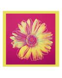 Marguerite (1982, fuschia et jaune) Reproduction d'art par Andy Warhol