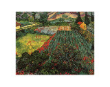 Field of Poppies  Saint-Remy  c1889