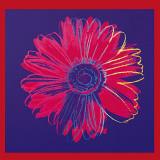 Marguerite (1982) (bleu et rouge) Reproduction d'art par Andy Warhol