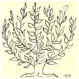 Le buisson/Le platane Sérigraphie par Henri Matisse
