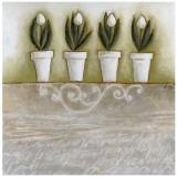 Pots de Tulipes