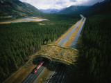 An Overpass for Wildlife Spans the Trans Canada Highway in Banff