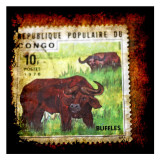 Buffalo Stamp