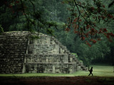 A Spider-Monkey Named Pancho  a Resident of Copan  Strolls Past a Small Pyramid