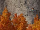 A Female Climber on a Cliff Wall
