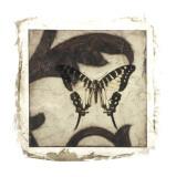Embellished Scroll Nine Patch VI