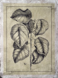 Embellished Antique Foliage IV