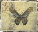 Postcard Song IV