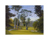 Shady Afternoon at the Olympic Club  No 11 Lake Course