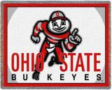Ohio State University  Mascot