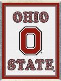 Ohio State University  Plaid Letters