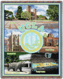 UCLA  Collage