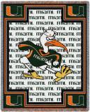 University of Miami  Ibis