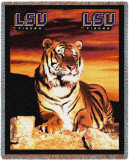 Louisiana State University  Tiger
