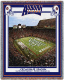 Auburn University  Perfect Season