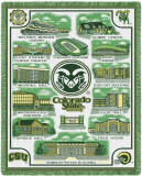 Colorado State University  Collage