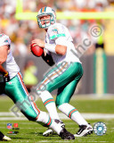 Chad Henne 2010 Action