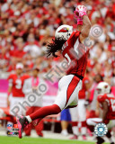 Larry Fitzgerald 2010 Action