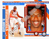Amare Stoudemire 2010-11 Studio Plus