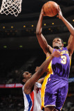 Los Angeles Lakers v Detroit Pistons: Devin Ebanks and Ben Gordon