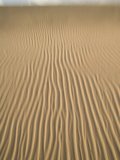 Ripples in Sand Dunes at Mesquite Dunes Near Stovepipe Wells