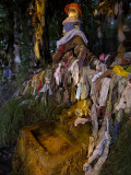 An Ancient Celtic Holy Well with Rags Dipped and Hung for Good Luck