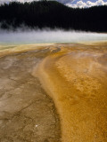 Steam Rises from Grand Prismatic  Largest of Yellowstone's Thermal Springs