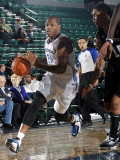 Austin Toros v Texas Legends: Rashad McCants
