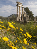 The Tholos Temple in the Sanctuary of Athena Pronaia And