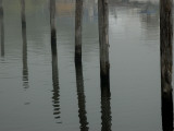 Six Wood Pilings Reflected in the Water at a Marina