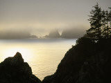 Pacific Fog Cloaks Rocky Outcroppings at Puffin Cove