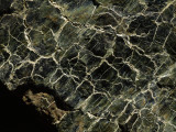 Serpentinite  Marked by Veins of Green in Scale Patterns  Tablelands  Gros Morne