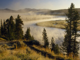 Veiled in Morning Mist  the Yellowstone River Winds Through Hayden Valley