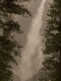 Bridalveil Fall in Yosemite National Park Framed by Two Pine Trees