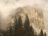 El Capitan Is Partially Obscured by Clouds in Yosemite Valley