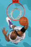 Dallas Mavericks v New Orleans Hornets: David West