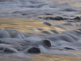 Water Rushes over Rocks in the Merced Wild and Scenic River