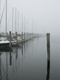 Sailboats Docked at a Pier on a Foggy Day