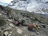 Pilgrims Circumambulating Mount Kailas