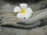 Buddha at Wat Yai Chai Khon Papier Photo par Alison Wright